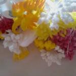 Alapanyagok, kellékek 3. – Bibék, porzók, bimbók