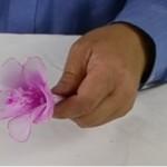 Mályvavirág készítése harisnyából