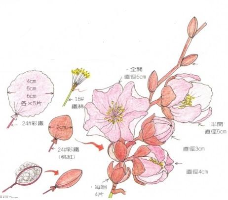 barackvirág