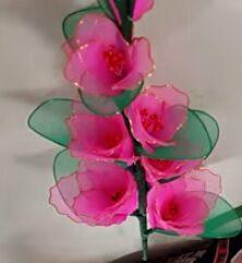 Lila kardvirág-csokor