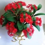 Piros-zöld harisnyavirág az ünnepekre