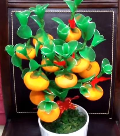 harisnyavirág narancsfa