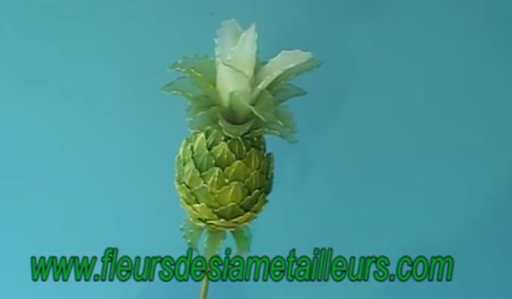 harisnyavirág ananász 6