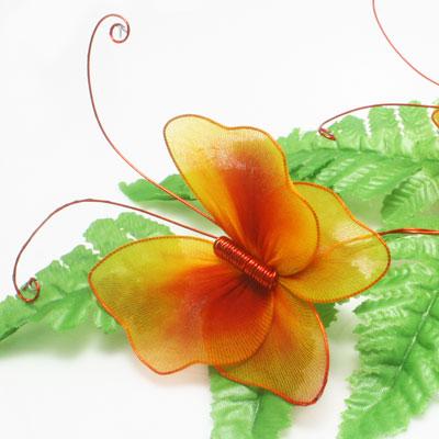 harisnyavirág pillangó