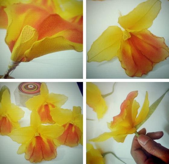 harisnyavirág cattleya orchidea 7