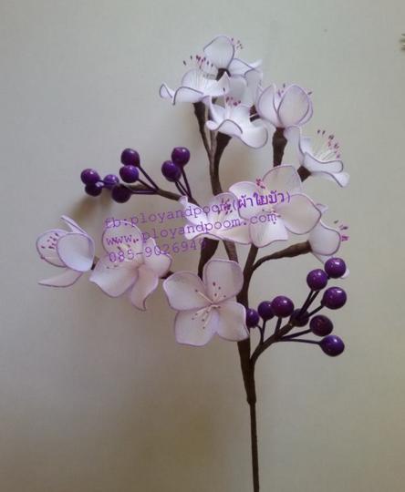harisnyavirág lila fehér 13