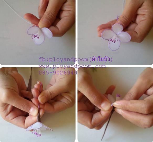 harisnyavirág lila fehér 6