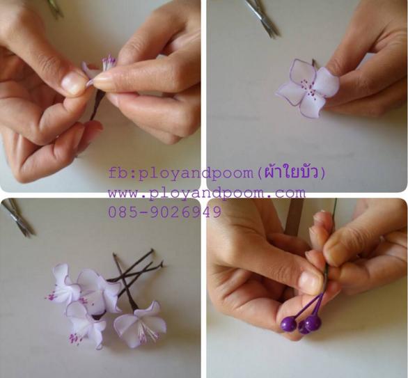 harisnyavirág lila fehér 7