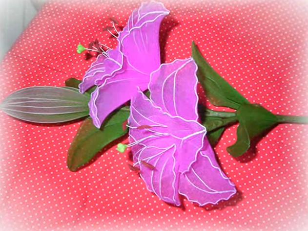 harisnyavirág liliom