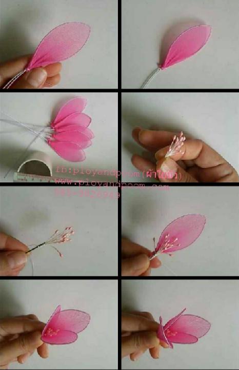 harisnyavirág rózsaszín 3