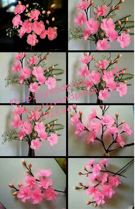 harisnyavirág rózsaszín 8