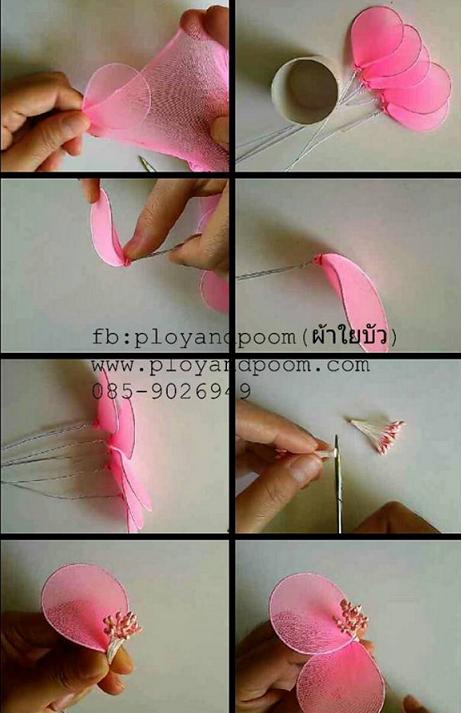 harisnyavirág rózsaszín 5