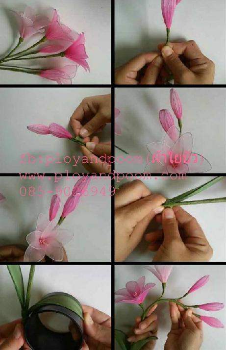 harisnyavirág rózsaszín 6