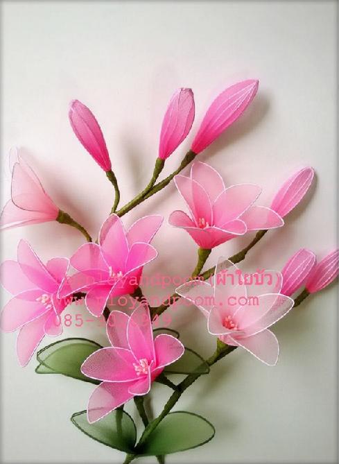 harisnyavirág rózsaszín 7