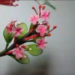 Csillaggyümölcs készítése videóval – egy különleges növény Ázsiából