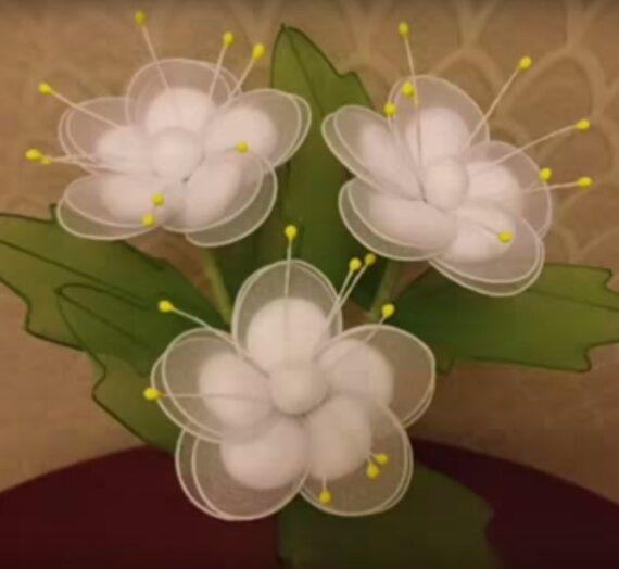 Dupla szirmú virág