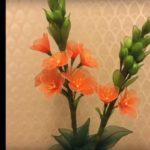 Narancsszínű madártej harisnyából