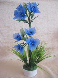 kék dizájn harisnyavirág