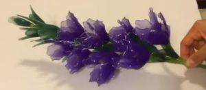 kardvirág harisnyavirág