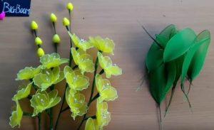 orchidea harisnyavirág