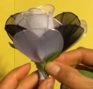 fekete-fehér rózsa 6
