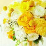 Sárga harisnya a Nap éltető erejével